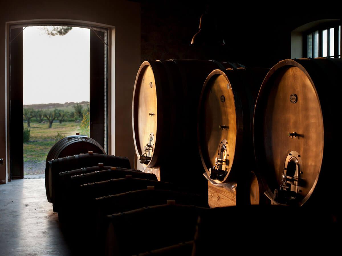 Fiorano farm, wine legend of Rome